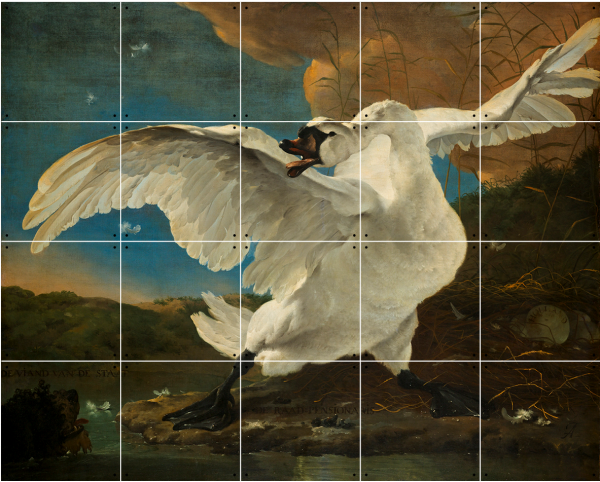 IXXI | Threathened Swan